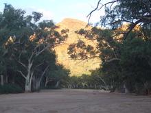 Sandiges Flussbett in der Trephina Gorge.