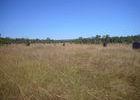 Und obwohl auch im Litchfield Nationalpark nahezu unendlich Fläche zur Verfügung steht ...