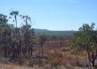 ... und das Northern Territory zeigt sich noch einmal in allen Facetten. Trocken ...