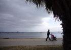 Strandläufer in Geelong.