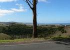 Von der Great Ocean Road geht es einige Kilometer ins Landesinnere.