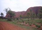 9 Kilometer geht es um den Heiligen Berg der Anangu.